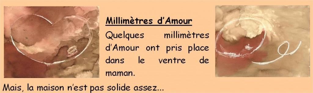 fiche_millimetre_texte