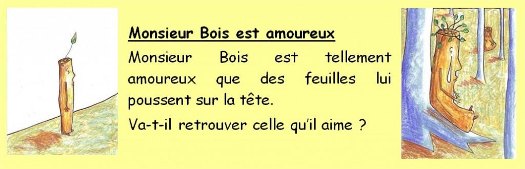 fiche_mr_bois_texte